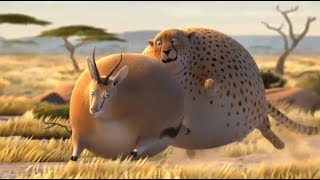 Hoạt hình 3D, động vật béo phì em bé cười, em bé vui vẻ   Dương Nguyên Kiss