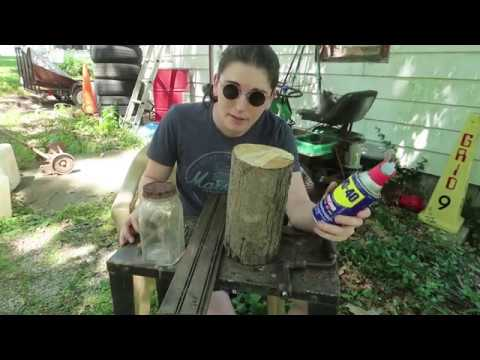 How To Get Rid Of Carpenter Bees