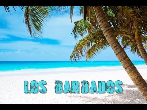 FIFTY VINC - LOS BARBADOS (SPANISH GUITAR x CARIBBEAN AFRO TRAP HIP HOP RAP BEAT)