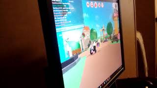 My sister final played Roblox