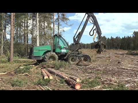 Timberjack harvester in a forest on Gotland in June 2017