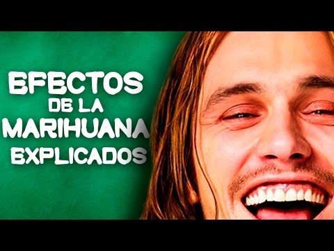 10 Efectos De La Marihuana – EXPLICADOS