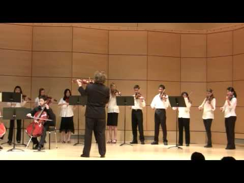 Vivaldi Violin Concerto in A Minor, 1st Movement