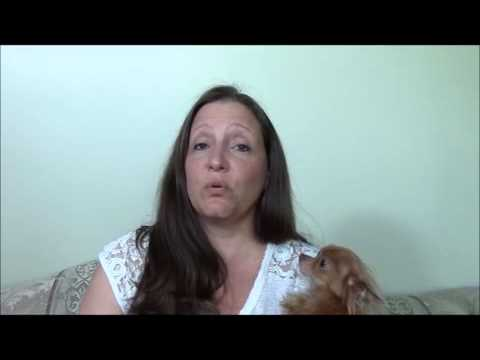 Pet Premium Insurance Review-[WARNING] This Testimonial will