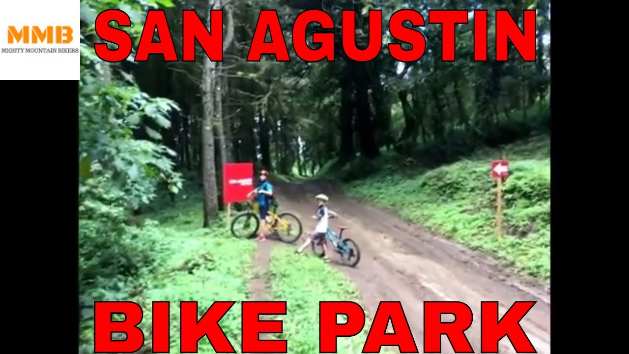 mountain biking essay