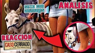ESTAS PERSONAS TENIAN S*X0 CON ESTE ANIMAL *sexo Cebra* | ANALIZANDO CASO CERRADO