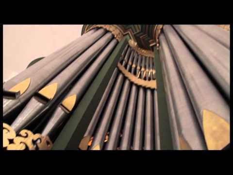 Achter de orgelschermen