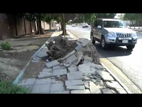 Walking up a storm on sidewalks - Arab News