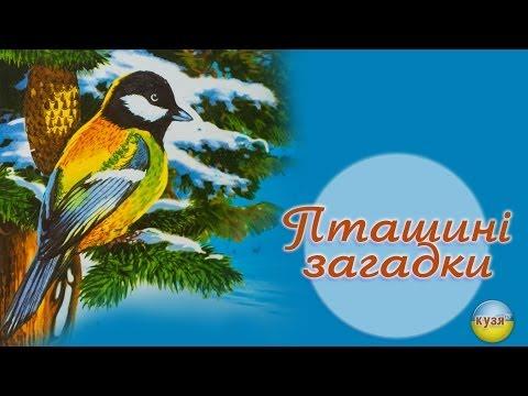 1 клас українська мова