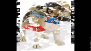 ошейник для собак с навигатором