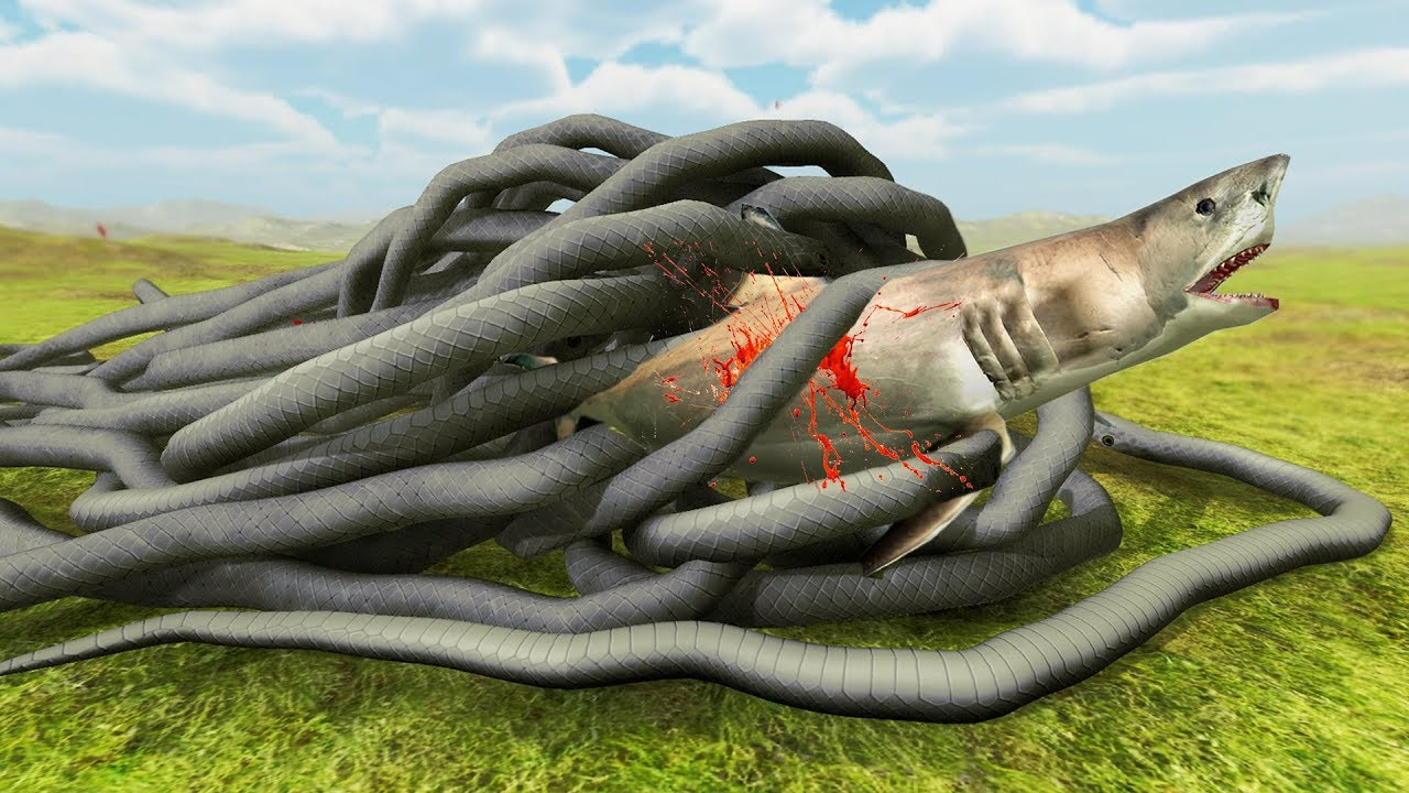 GIANT SNAKE vs SHARK - Beast Battle Simulator - YouTube - photo#34