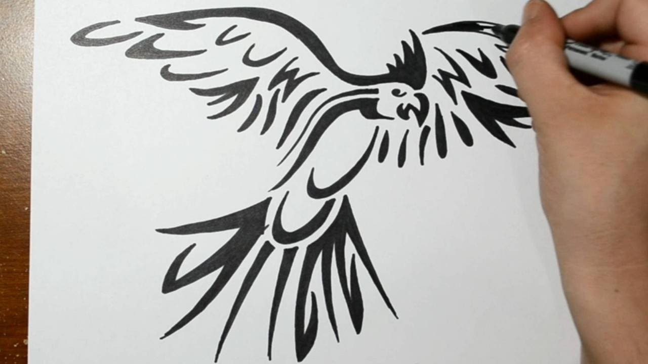 How To Draw A Parrot  Tribal Tattoo Design Style