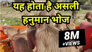 1 Million+ Views   Shyam Sadhu - Asli Hanuman Bhoj