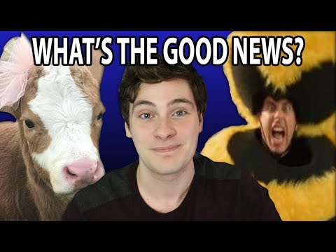 Bee Movie For Real and Indoor Cows - What's The Good News?