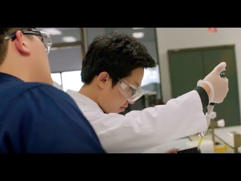 Science at the University of Sydney