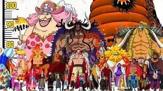 One Piece: Alle Charakter-Größen im Vergleich!📏