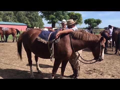 # 138 Argentyna: gauchos (ESTANCIA Santa Susana)