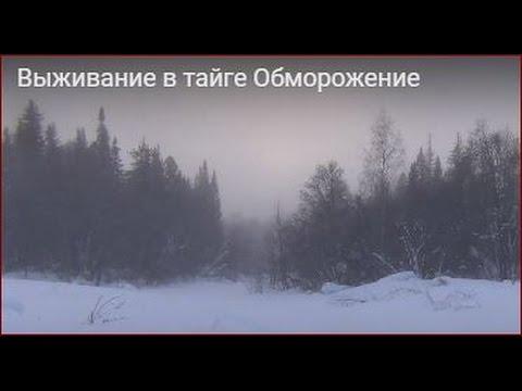 видео: Выживание в тайге Обморожение. Костер в мороз -55. Напилка дров в мороз.