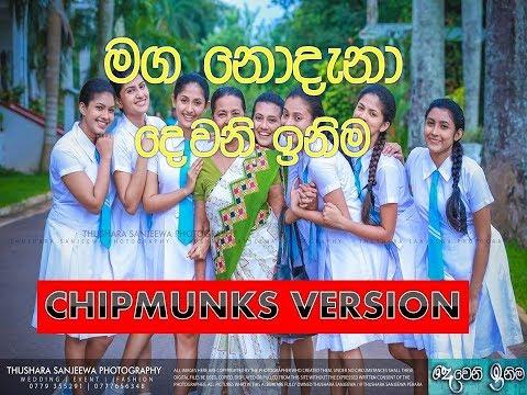 CHIPMUNKS VERSION-Maga Nodana (Ingi Bingi Sena) | Deweni Inima