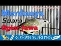 Suara Opior Jawa Cak Jempol Sambitan Gacor Variasi Unik Mees S White Eye  Mp3 - Mp4 Download