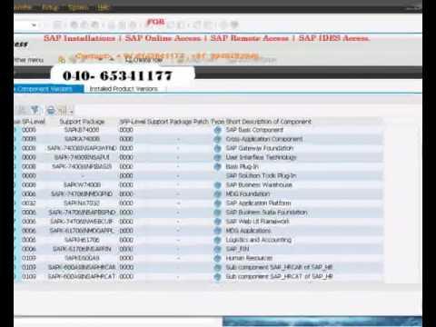 SAP Installations | SAP Online Access | SAP Remote Access | SAP Online  Training