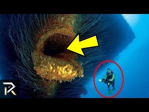 The Biggest Unknown Underwater Creatures On Earth