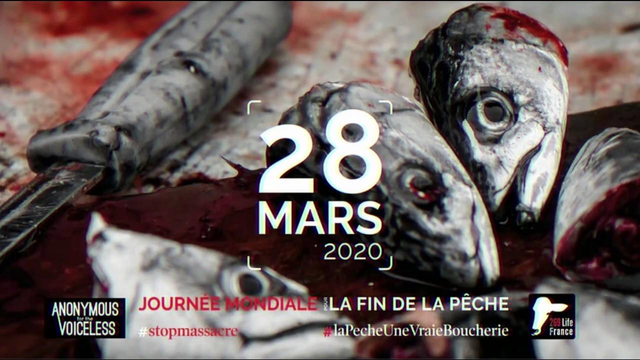 Abolition de l'exploitation marine 2020 [Journée Mondiale pour la Fin de la Pêche]
