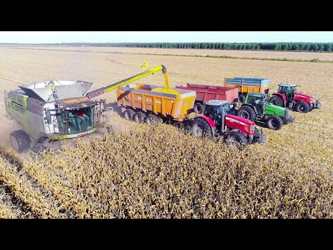 XXL MOISSON maïs 2017 in FRANCE - Claas Lexion 780 TT & Gros