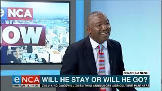 EFF's Mbuyiseni Ndlozi speaks on the Nene situation