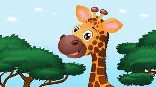 Zwierzęta afrykańskie - Bajka dla dzieci