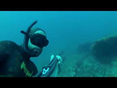 pesca submarina España