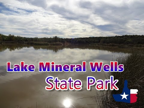 Lake Mineral Wells State Park, Texas, RV Camping, Deer And A Mountain Lion