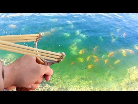 SLINGSHOT Fishing!