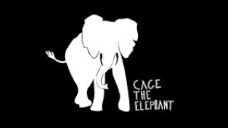 Repeat youtube video Ain't No Rest For The Wicked by Cage The Elephant |Lyrics|