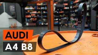 Ķīļrievu siksna montāža AUDI A4: video pamācības