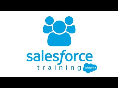 Salesforce Tutorial for beginners: Variables and data types in ...