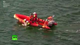 Pup overboard! Coastguard rescues small dog off Scotland