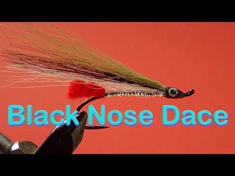 Beginner's Fly Tying Series: Easy Streamer Series - The Black Nose Dace