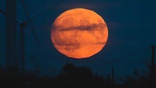 Hình ảnh siêu trăng lớn nhất 70 năm screenshot 4