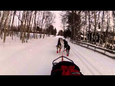 Femundløpet2013 - Sledekamera fra Røros