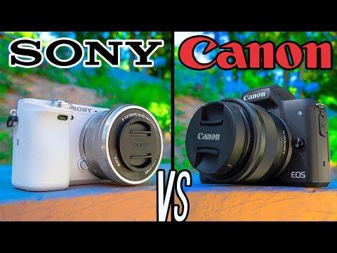 Canon M50 vs Sony A6000!  The ULTIMATE BUDGET Creator Camera BATTLE!