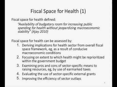 Fiscal Space for Health by Netsanet Walelign Workie