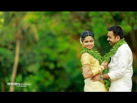 Kerala Hindu Wedding Highlights 2016 Dr.Vineeth - Dr.Ambili