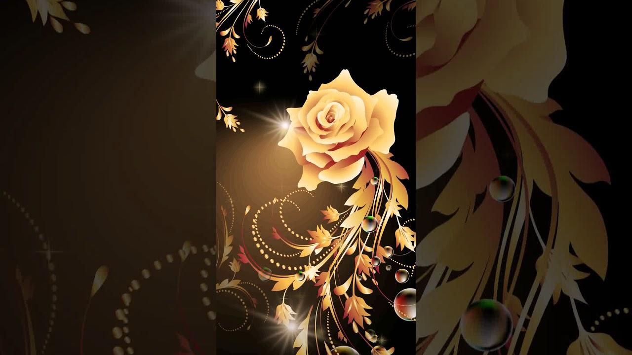 Samsung Wallpaper Themes: [Samsung Theme-Live Wallpaper]Golden Rose