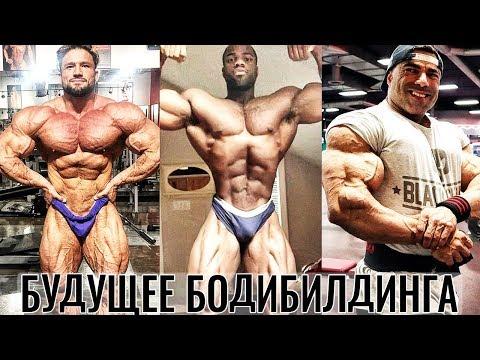 МИСТЕР ОЛИМПИЯ 2019 - Новости Дивизиона 212 - Бодибилдинг сегодня и завтра