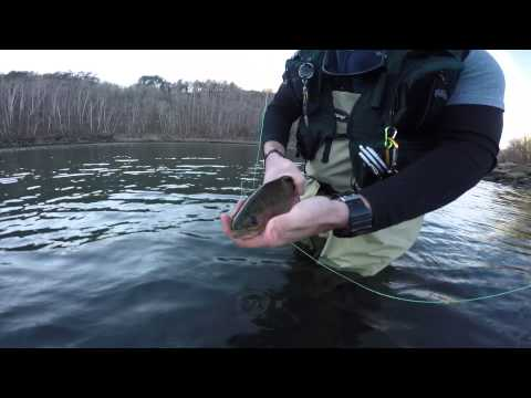 Otter creek trout fishing ky gopro doovi for Fly fishing kentucky