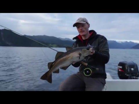 Fliegenfischen im Fjord - unveröffentlichte Szenen