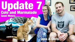 Cole And Marmalade Update Lucky 7