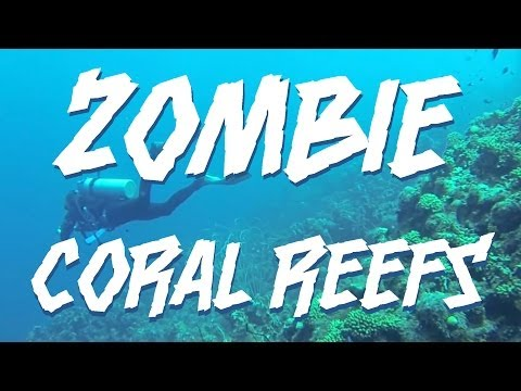 Zombie Coral Reefs