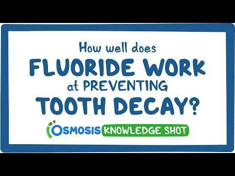 How well do fluoride treatments work at preventing tooth decay?